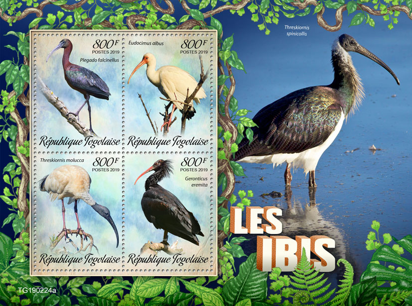 Ibis - Issue of Togo postage stamps