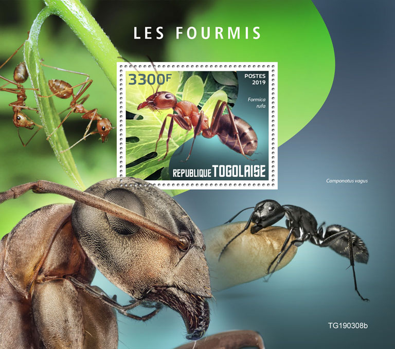 Ants - Issue of Togo postage stamps