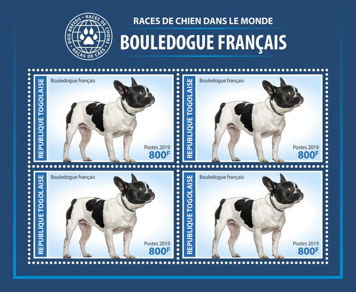 French bulldog - Issue of Togo postage stamps