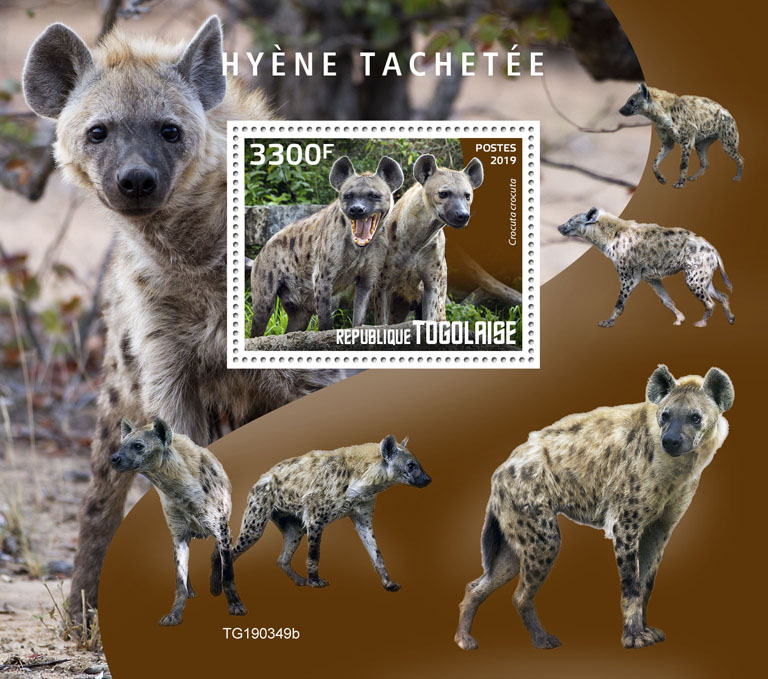 Spotted hyena - Issue of Togo postage stamps