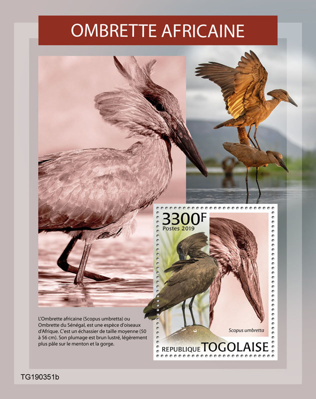 Hamerkop - Issue of Togo postage stamps