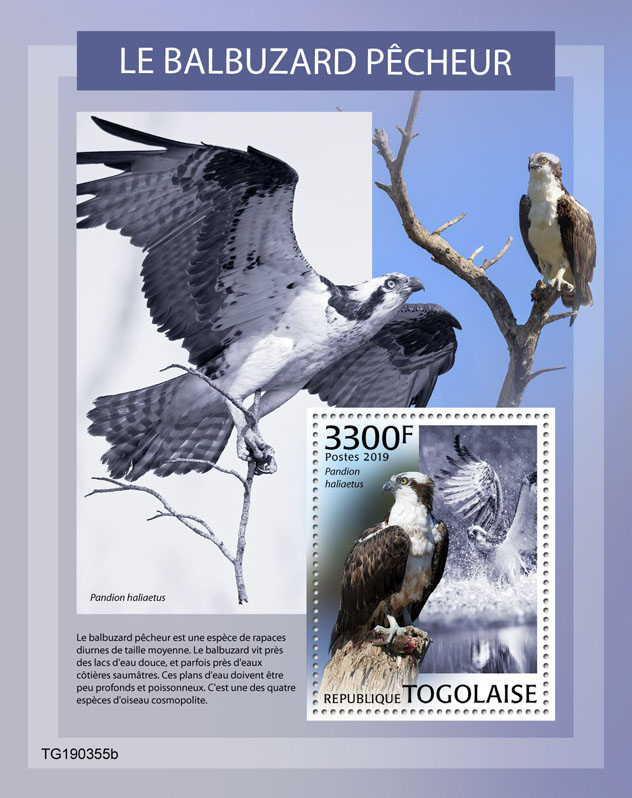 Osprey - Issue of Togo postage stamps