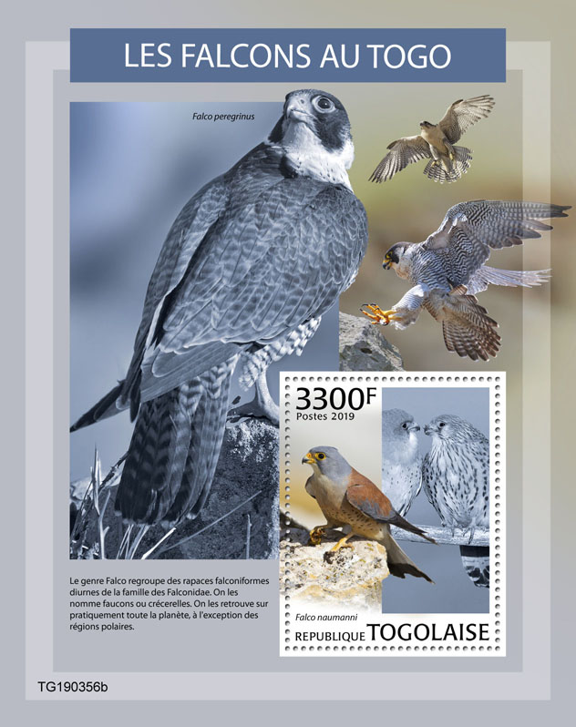 Falcons in Togo - Issue of Togo postage stamps