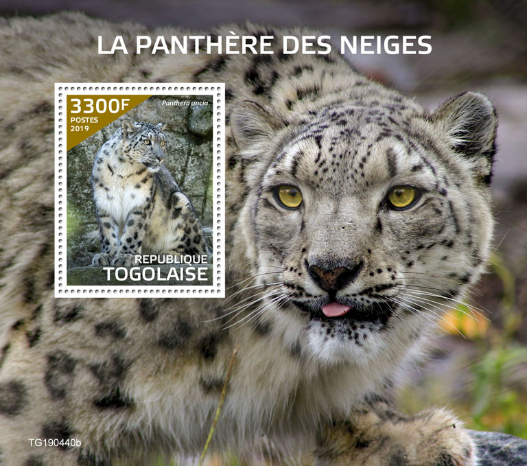 Snow leopard - Issue of Togo postage stamps