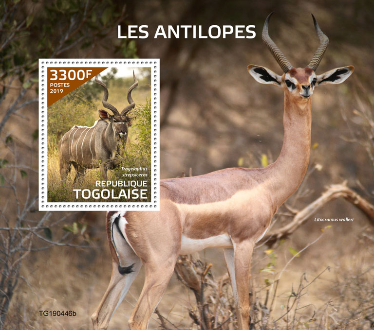 Antilopes - Issue of Togo postage stamps