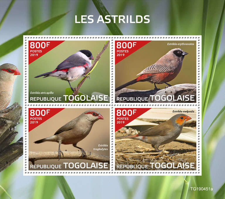 Waxbills - Issue of Togo postage stamps