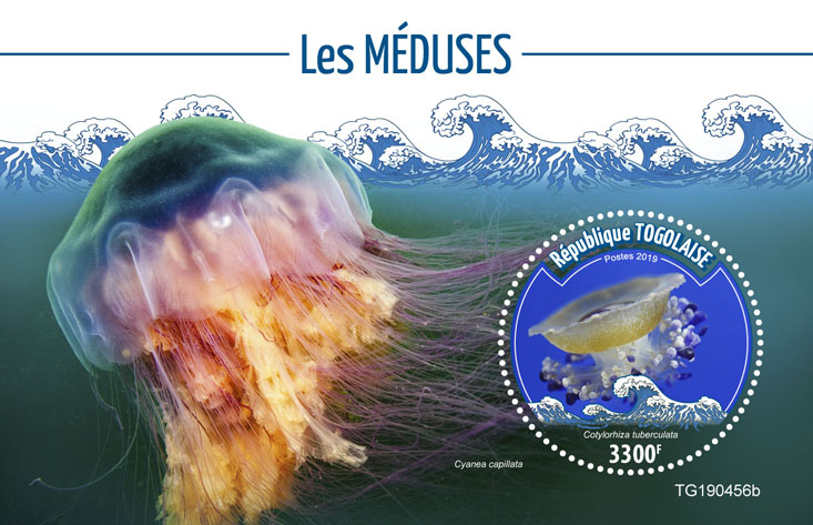 Jellyfish - Issue of Togo postage stamps