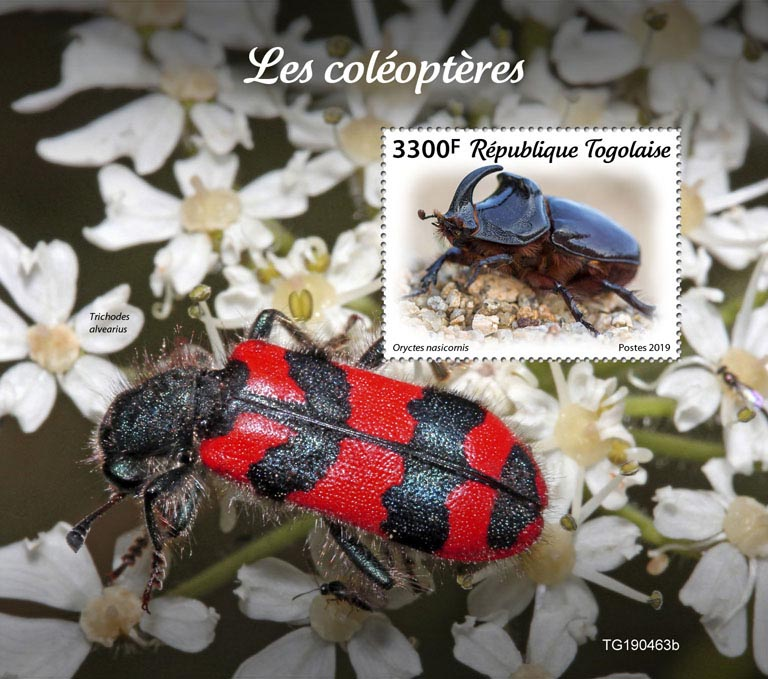 Beetles - Issue of Togo postage stamps