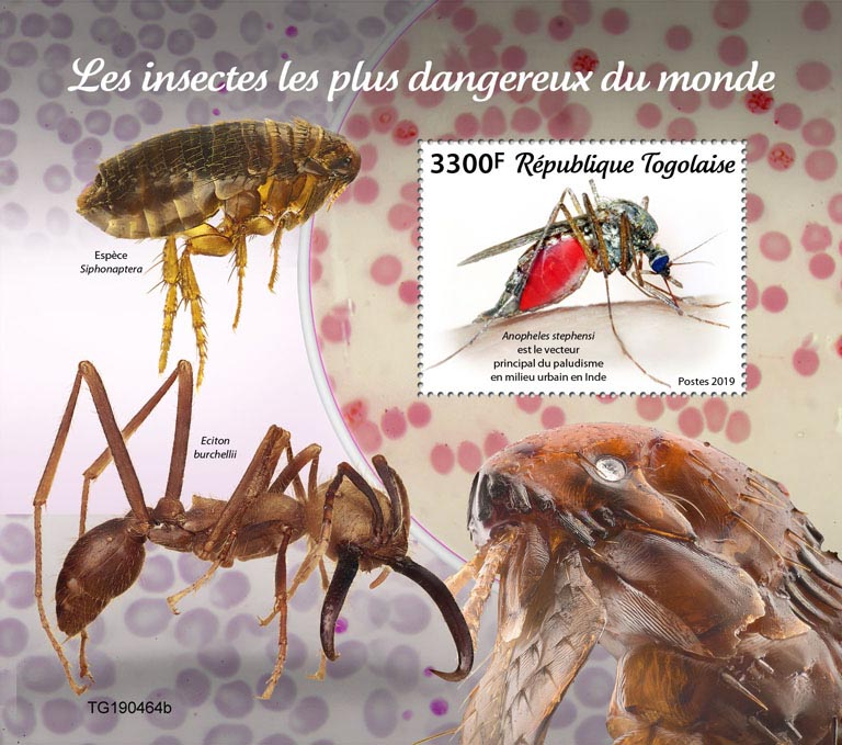 The most dangerous insects in the world - Issue of Togo postage stamps